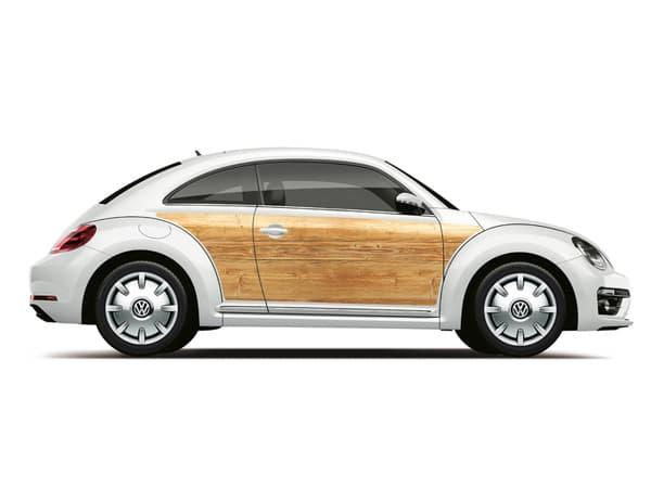180730-Beetle-01.jpg