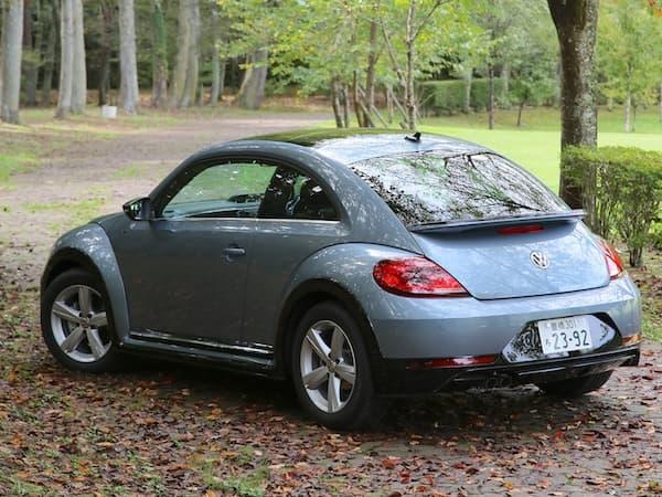 161116-Beetle-2.jpg