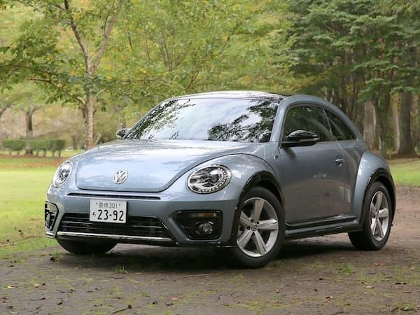 161116-Beetle-3.jpg