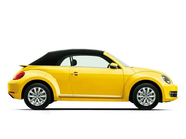 131101-Beetle.jpg