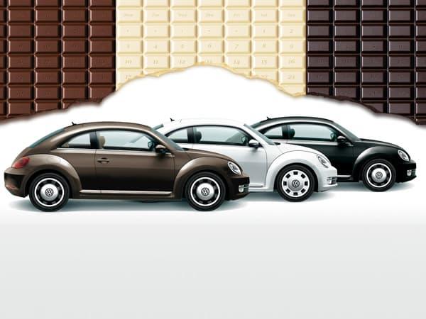 140114-Beetle-01.jpg