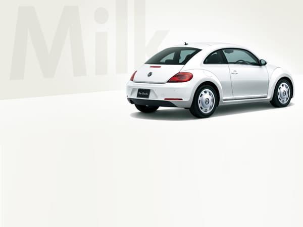 140114-Beetle-07.jpg