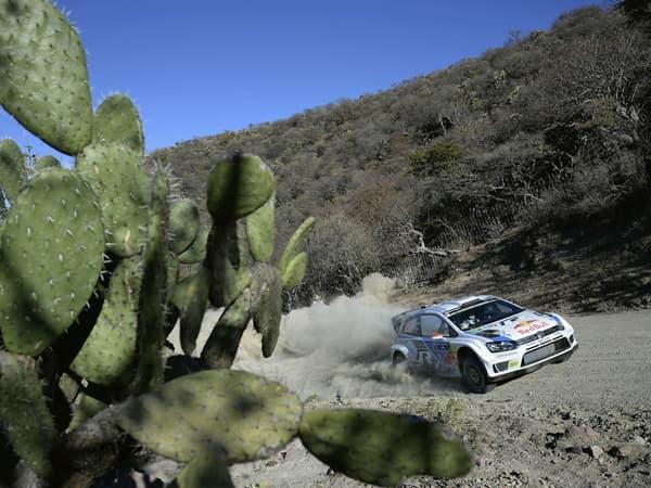140310-WRC-09.jpg