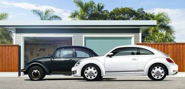 140925-Beetle-2.jpg