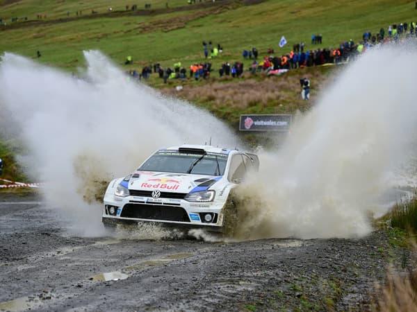 141117-WRC-02.jpg
