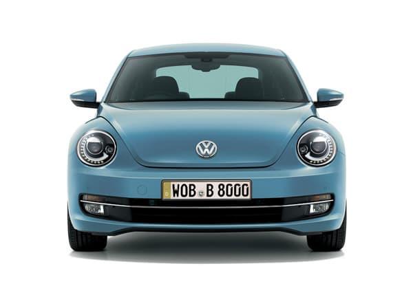 150120-Beetle-02.jpg
