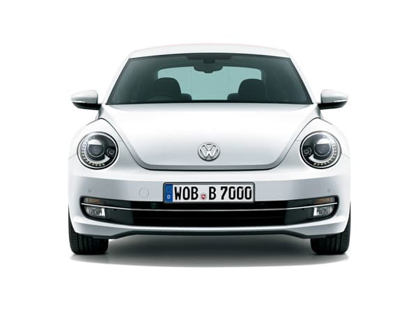 150120-Beetle-06.jpg