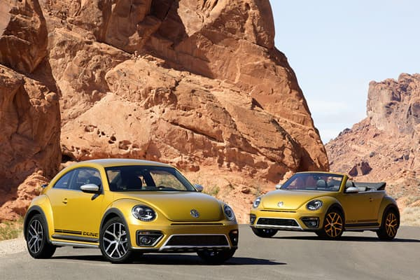 151117-Beetle Dune-01.jpg