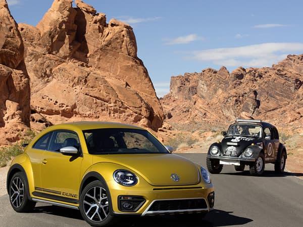 151117-Beetle Dune-02.jpg