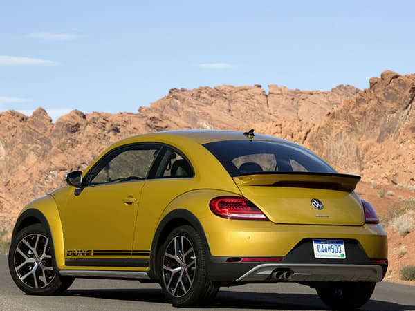 151117-Beetle Dune-03.jpg