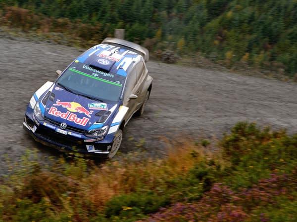 161031-WRC-05.jpg