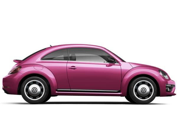 161109-PinkBeetle-01.jpg