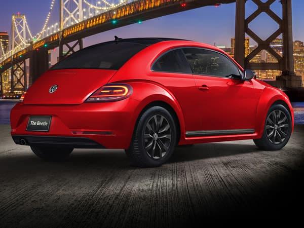 171128-Beetle-03.jpg