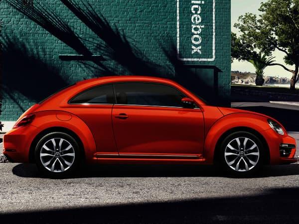 180202-Beetle-01.jpg