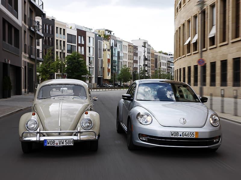 1108-beetle002.jpg