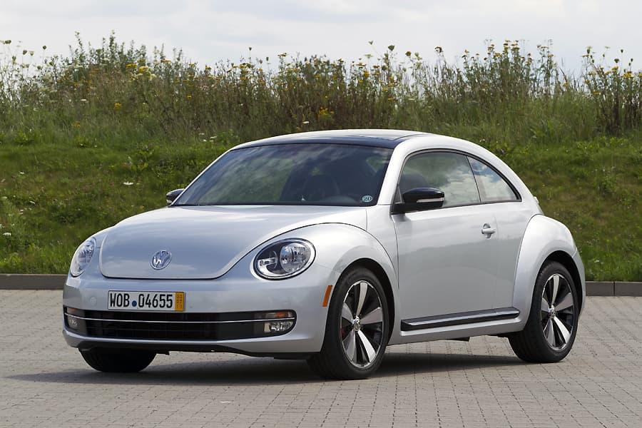 1108-beetle003.jpg