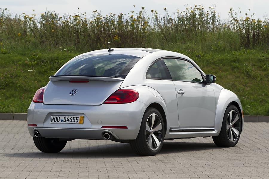 1108-beetle004.jpg