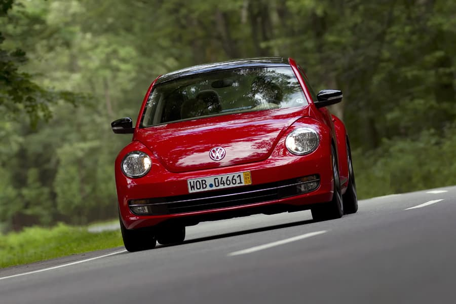 1108-beetle015.jpg