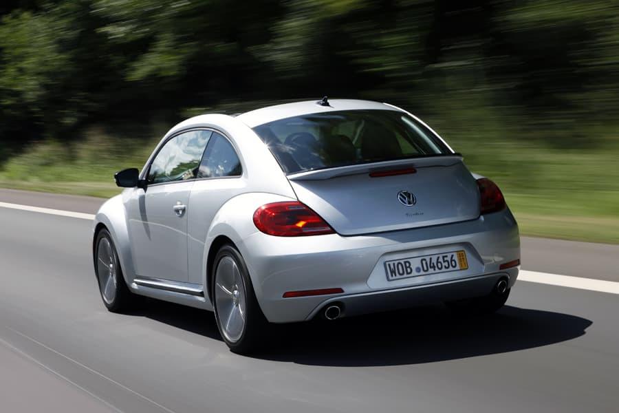 1108-beetle018.jpg