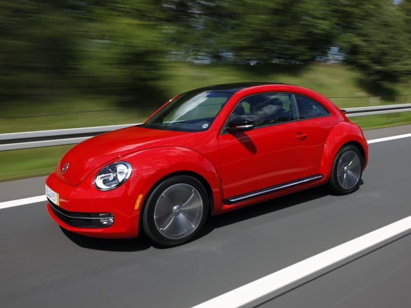1108-beetle019.jpg