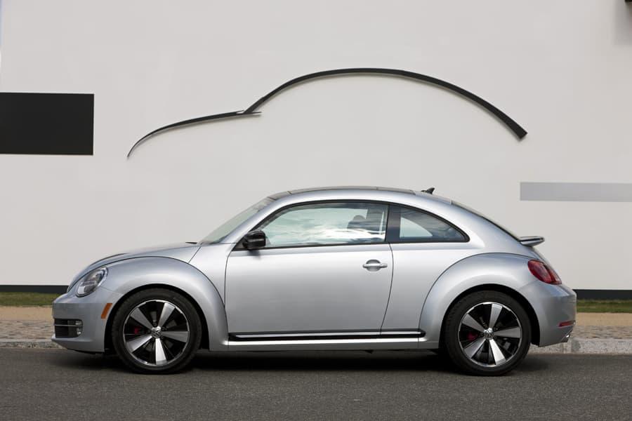 1108-beetle020.jpg