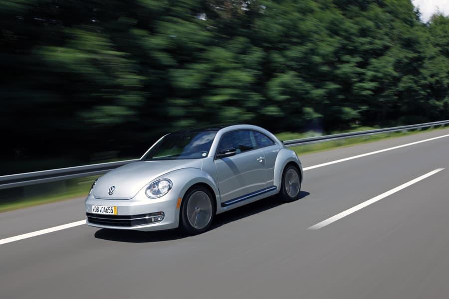 1108-beetle022.jpg
