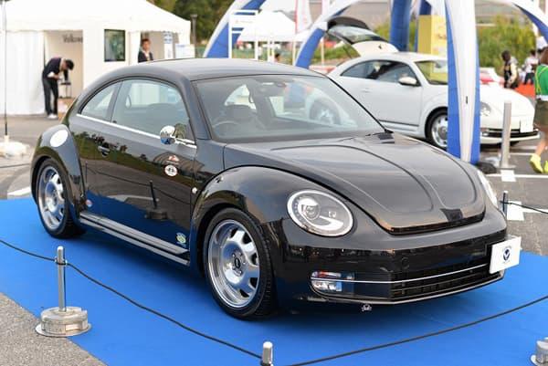 141017-Beetle-06.jpg