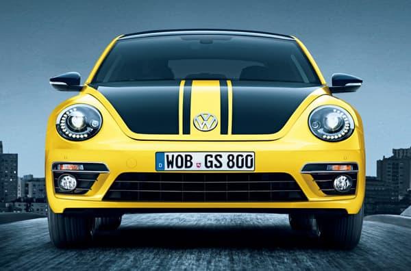 140707-Beetle-01.jpg